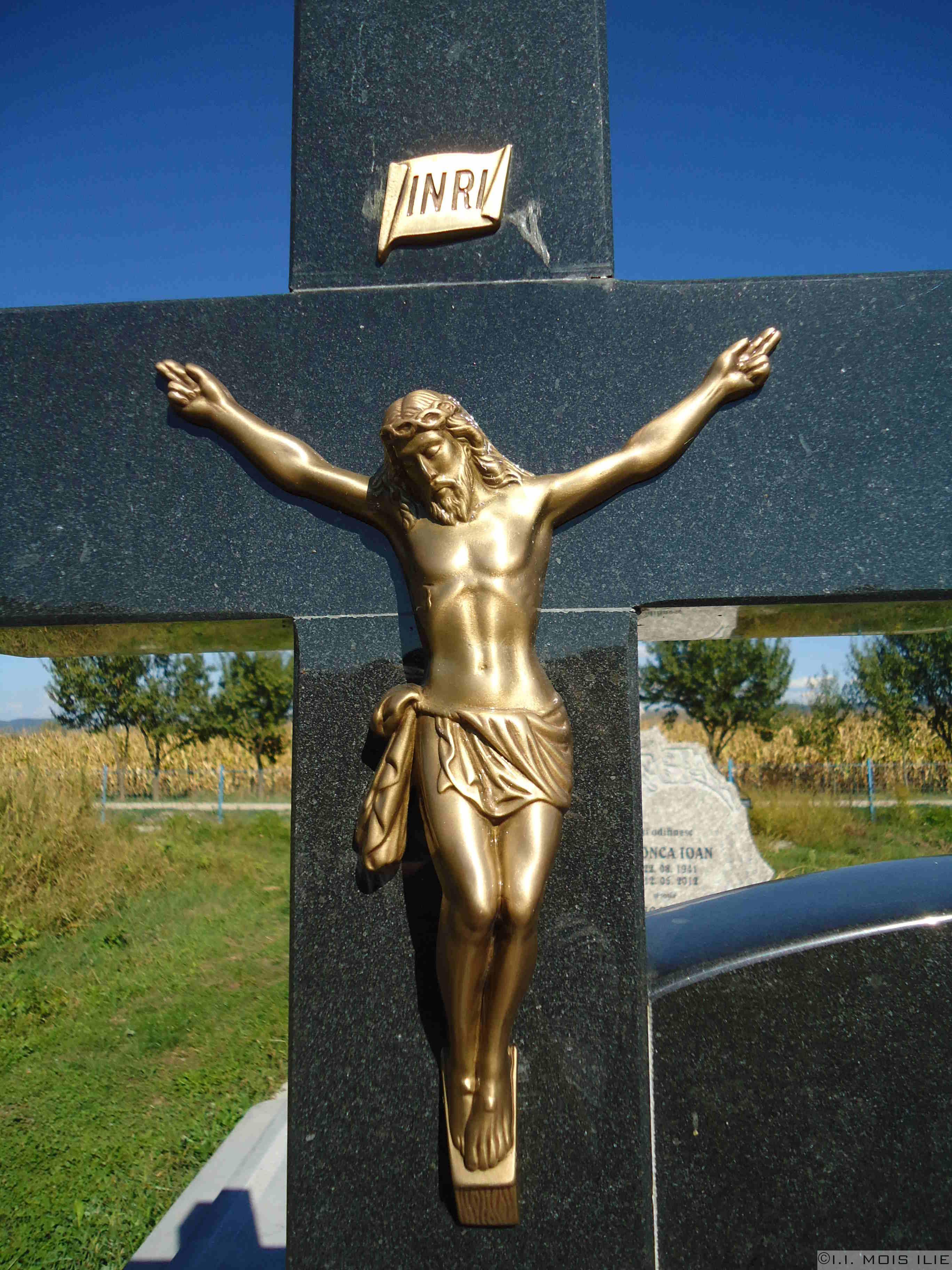 Statuie Bronz Rastignire